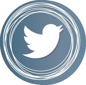 logo rosa twitter